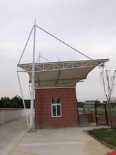 上海地區膜結構車棚、膜結構工程、張拉膜、汽車棚圖片