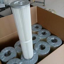 生产除尘滤芯120650图片