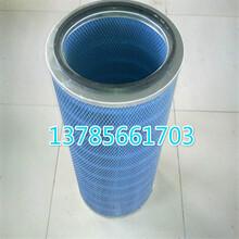 325除塵濾芯粉末回收濾芯圖片