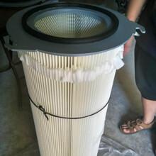 325660除塵濾芯廠家供應粉塵回收濾芯圖片