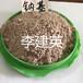 現貨供應鈣基膨潤土造漿用膨潤土粘結劑膨潤土價格膨潤土粘度