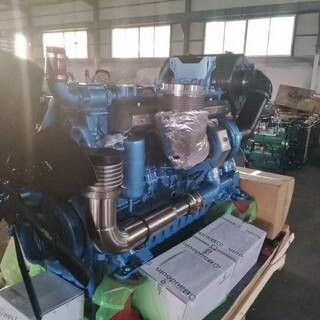 潍柴动力博杜安潍柴600KW柴油发电机组潍柴大功率柴油机图片2