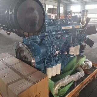 潍柴动力博杜安潍柴600KW柴油发电机组潍柴大功率柴油机图片4