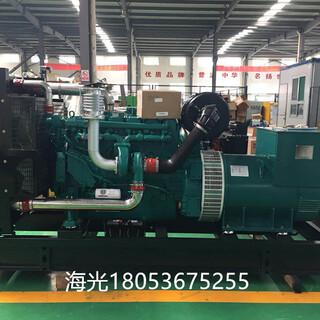 潍柴发电用柴油机WP10D320E200P配套无锡星诺电机道依茨系列图片6