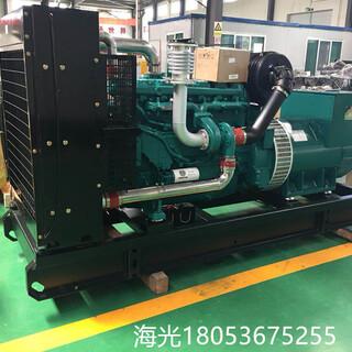 潍柴发电用柴油机WP10D320E200P配套无锡星诺电机道依茨系列图片5