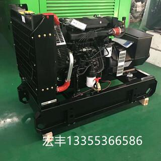 40千瓦潍柴扬动发电设备60赫兹WP2.3D41E201/WP2.3D47E201图片3
