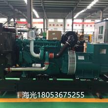 正宗潍柴动力蓝擎柴油机WP10D320E200六缸增压柴油机图片