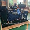 30千瓦燃气发电机组