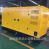 潍柴柴油发电机250kw低噪音发电机组WP10D320E200