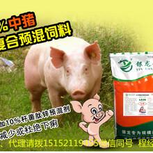 山阴县供应中猪饲料4%育肥猪预混料厂家直销图片