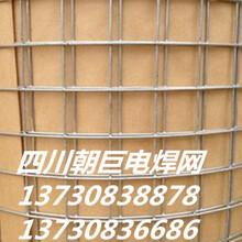 金堂镀锌电焊网、金堂工地抹灰网、金堂建筑保温网、金堂电焊网批发