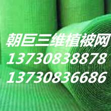 广元三维植被网、广元绿化三维植被网、广元三维植被种草网、广元护坡三维植被网