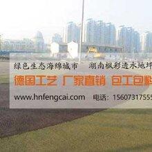 广东阳江彩色透水混凝土路面哪有施工队图片