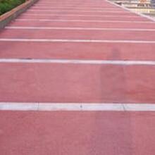 貴州安順公園彩色透水混凝土咨詢楓彩地坪圖片