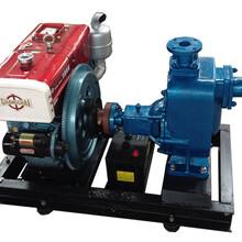 供应上海舜隆泵业机械供应SLDZNC单缸柴油机农用泵离心泵清水泵输送泵隔膜泵图片