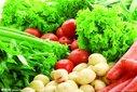 金華東陽新鮮蔬菜配送,新鮮蔬菜采摘,價格優惠,童叟無欺圖片
