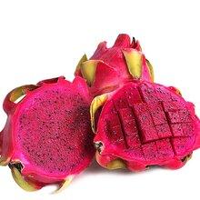 进口智利蓝莓大连清关国外需要的手续