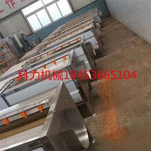 红萝卜喷淋清洗机厂家批发价花生清洗机价格优c图片
