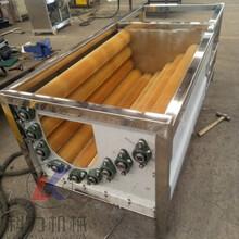 大型土豆萝卜去皮清洗机多功能清洗机机去皮机生产厂家图片