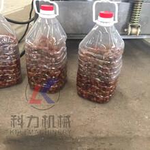 厂家定制果汁果酒压榨机榨汁机液压压榨机价格图片