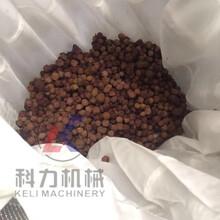 双桶收汁液压压榨机桑葚压榨机哪家质量好图片