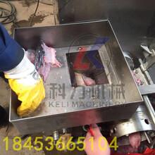 自动去鱼刺挤鱼肉机器火腿肠去皮机哪里卖图片