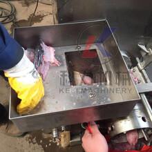 多功能鱼类鱼骨分离机鱼肉脱刺机专业厂家专业定制机械图片