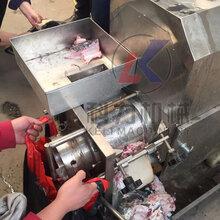 专业定制机械多功能鱼肉采肉机自动鱼肉鱼骨分离机怎么样?图片