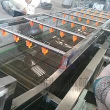 大枣气泡清洗机多少钱自动洗菜机器质量哪家好图片