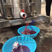 果汁果酒压榨机价格不锈钢压榨机多少钱图片