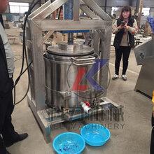 杨梅汁怎么压榨,压榨杨梅汁用什么设备,水果压榨机图片