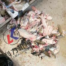 黄花鱼采肉机马哈鱼采肉机鱼肉采肉机尺寸可定制图片