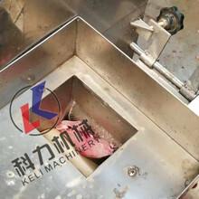 不锈钢鱼肉采肉机自动鱼丸鱼肉分离机厂家现货图片