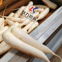 花生去泥清洗机紫薯胡萝卜去皮清洗机批发厂家图片