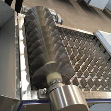 科力自動化切斷機鯉魚切塊機比比哪家好?圖片