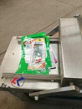 小型真空包装机,干湿两用包装机,600型真空包装机图片
