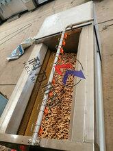 厂家热卖红薯芋头去皮清洗机商用莲藕毛辊磨皮机方便工人清除操作方便图片