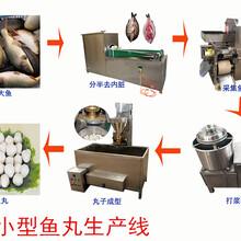 黄花鱼采肉机小鱼采集机专业定制厂家售后比较完善图片