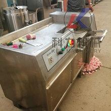 科力機械有限公司廠家直銷凍肉切丁機肉類制品生產機器圖片