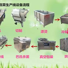 叶菜清洗机,冬笋竹笋清洗加工机器,多功能涡流加工机器图片