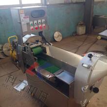 厂家直销芹菜豆角切段机自动变频切菜机图片