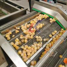 自動脫水蔬菜清洗機,4米蔬菜清洗機,果蔬清洗機圖片