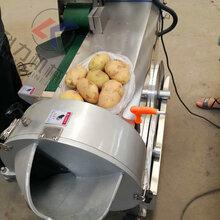 蔬菜切菜机切丝机萝卜切丝机双头切菜机不锈钢材质图片