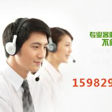 甘肃源产地特产商城总部招商——直接送公司代理90%返佣图片