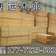 滁优游注册平台落叶松木方价格图片