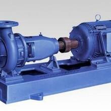 ZLX直联式自吸泵-上海威泉泵业制造有限公司