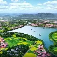 兰考县文案策划千寻合作内容规划设计图片