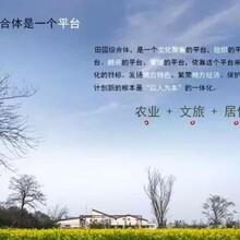 融安县节能评估报告千寻合作内容规划设计图片