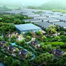 低价代写金阳县项目建议书找千寻图片