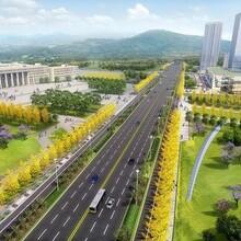 团队编制金阳县价值分析报告有家公司图片